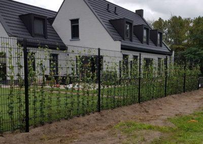 Dubbel staafmat hekwerk met hedera beplanting naast laag spijlenhekwerk met dubbele bovenligger